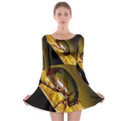 Insect  Long Sleeve Skater Dress