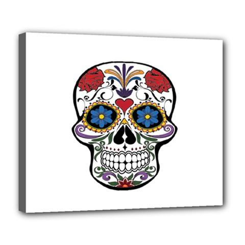 Cranium Deluxe Canvas 24  x 20
