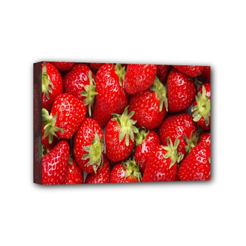Red Fruits Mini Canvas 6  X 4