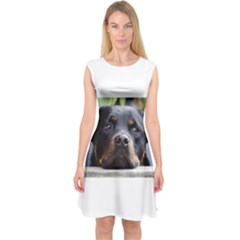 Rottweiler 2 Capsleeve Midi Dress