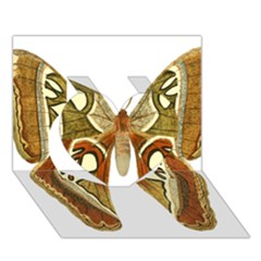 Butterfly Animal Insect  Heart 3D Greeting Card (7x5)