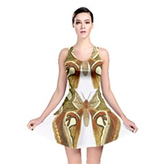 Butterfly Animal Insect  Reversible Skater Dress