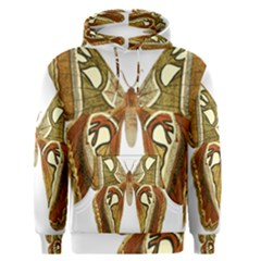 Butterfly Animal Insect  Men s Pullover Hoodie