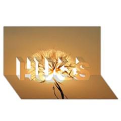 Dandelion Sun Dew Water Plants HUGS 3D Greeting Card (8x4)