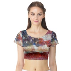 Grunge United State Of Art Flag Short Sleeve Crop Top (Tight Fit)