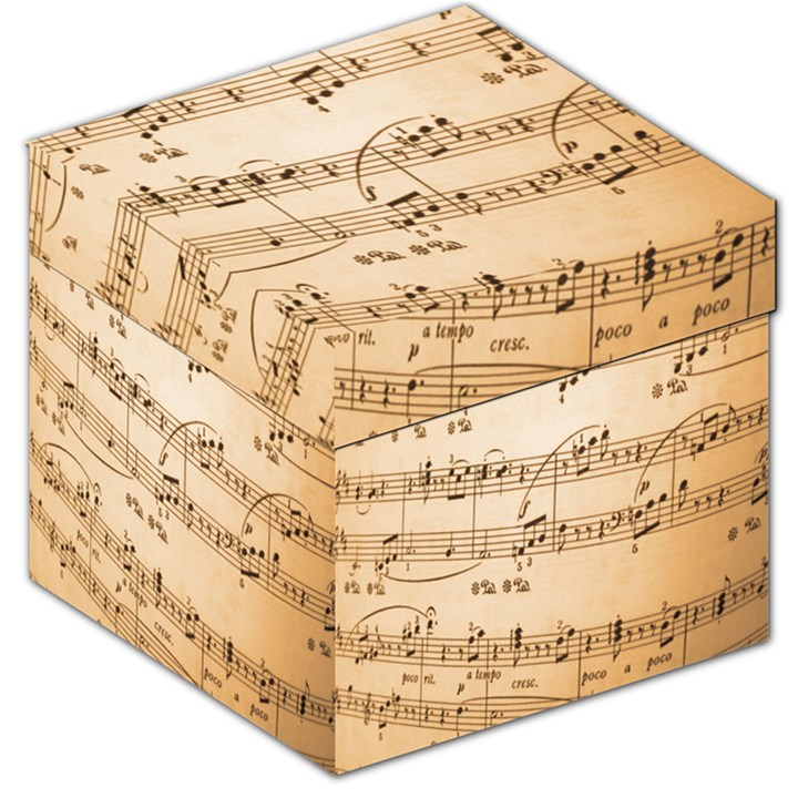 Music Notes Background Storage Stool 12