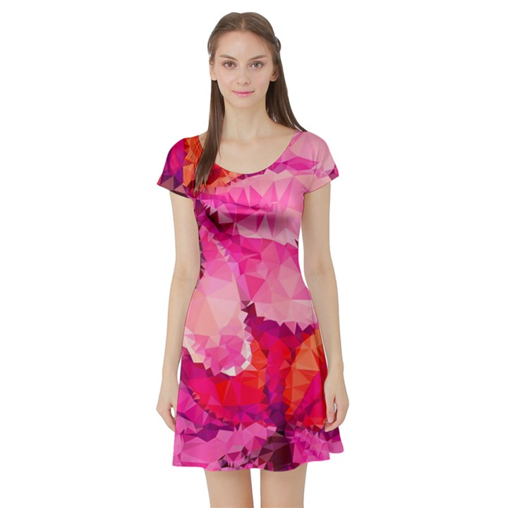 Geometric Magenta Garden Short Sleeve Skater Dress