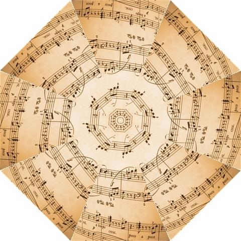 Music Notes Background Hook Handle Umbrellas (Large)