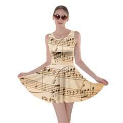 Music Notes Background Skater Dress