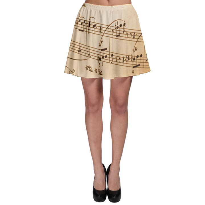 Music Notes Background Skater Skirt