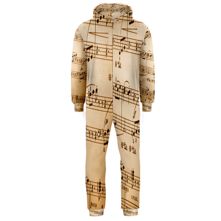 Music Notes Background Hooded Jumpsuit (Men)