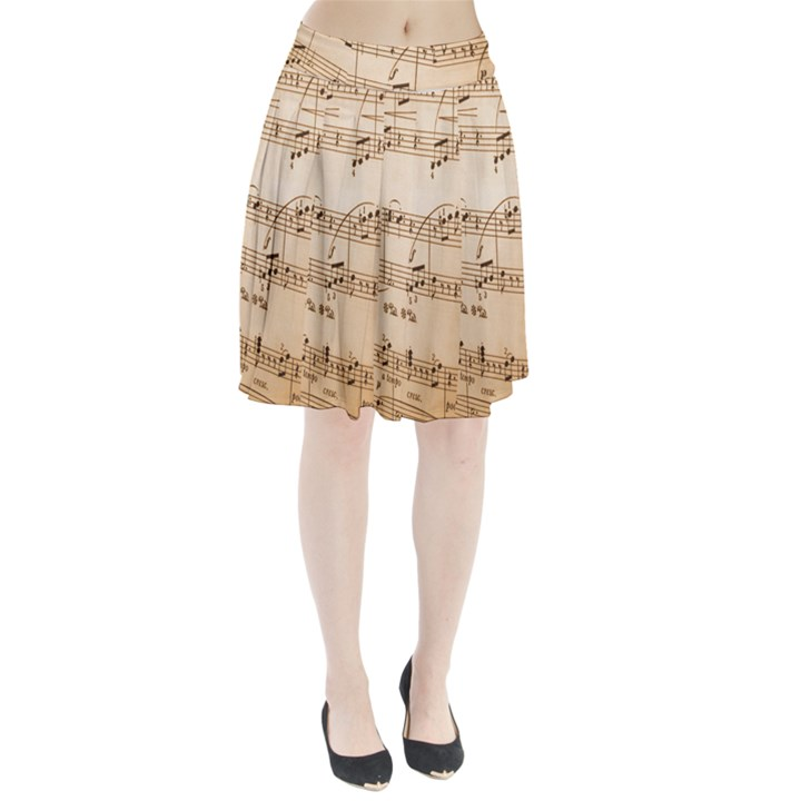Music Notes Background Pleated Skirt
