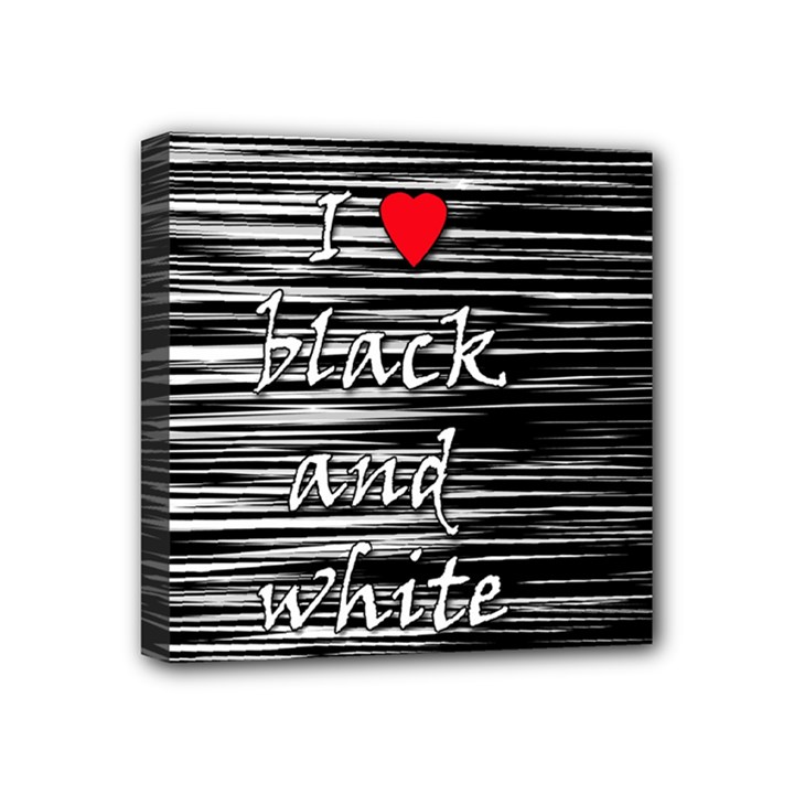 I love black and white 2 Mini Canvas 4  x 4