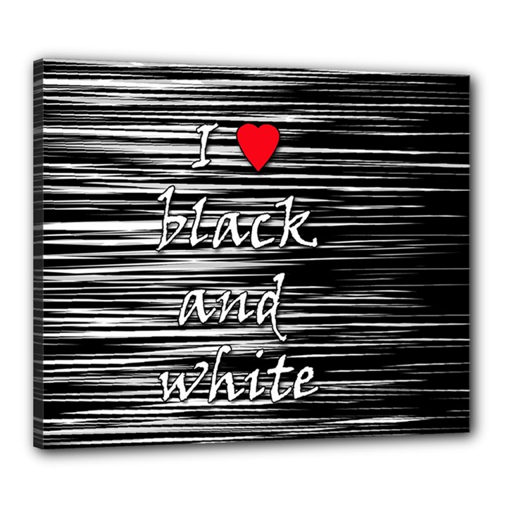 I love black and white 2 Canvas 24  x 20