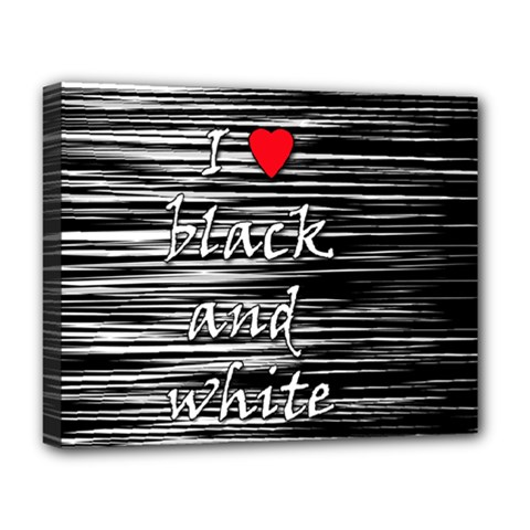 I love black and white 2 Deluxe Canvas 20  x 16