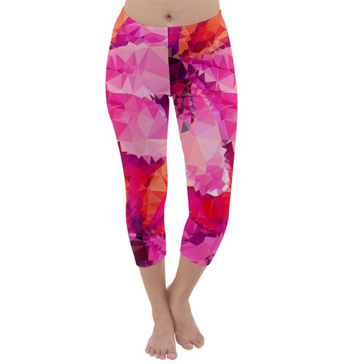 Geometric Magenta Garden Capri Winter Leggings