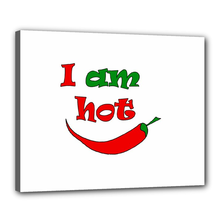 I am hot  Canvas 20  x 16
