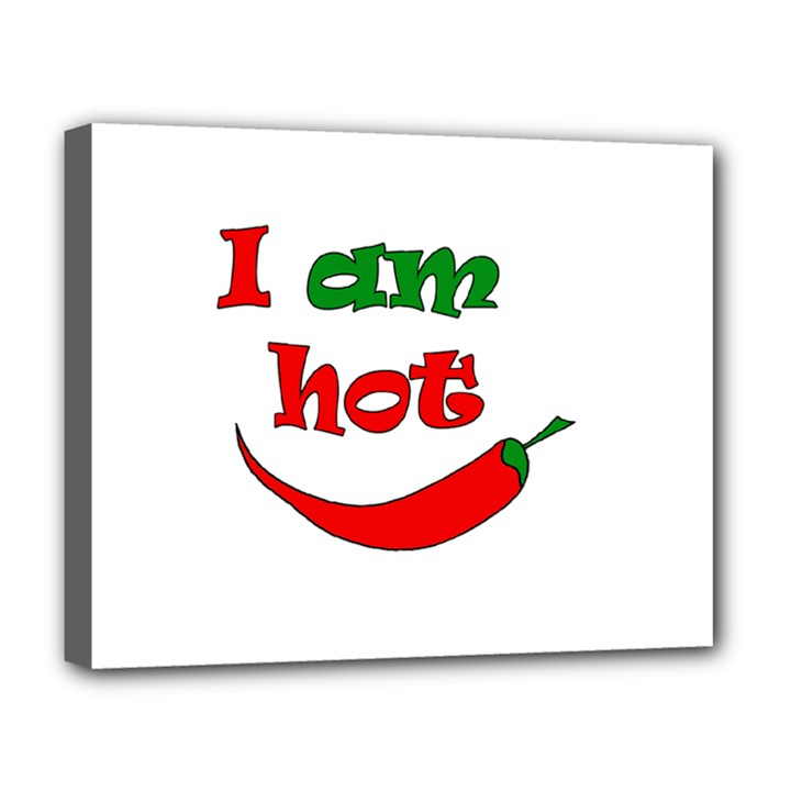 I am hot  Deluxe Canvas 20  x 16