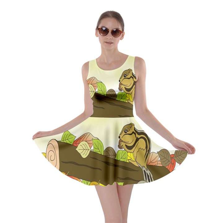Squirrel  Skater Dress