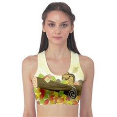 Squirrel  Sports Bra
