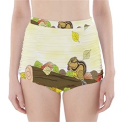 Squirrel  High-Waisted Bikini Bottoms