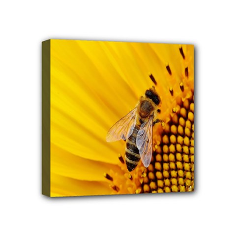 Sun Flower Bees Summer Garden Mini Canvas 4  x 4