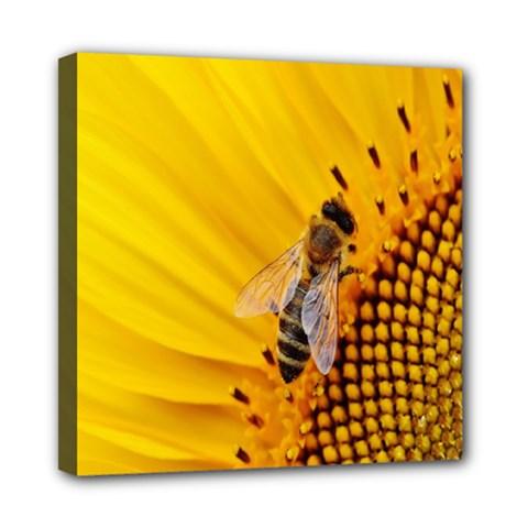 Sun Flower Bees Summer Garden Mini Canvas 8  x 8