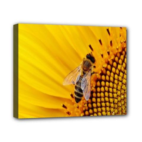 Sun Flower Bees Summer Garden Canvas 10  x 8