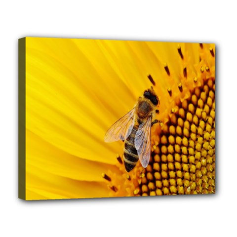Sun Flower Bees Summer Garden Canvas 14  x 11