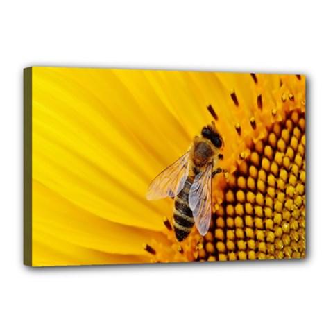 Sun Flower Bees Summer Garden Canvas 18  x 12