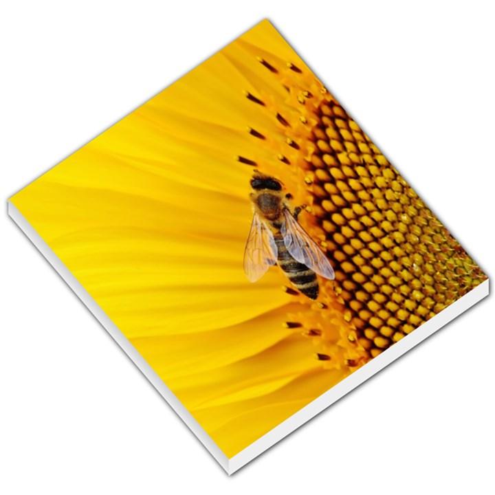 Sun Flower Bees Summer Garden Small Memo Pads
