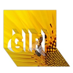 Sun Flower Bees Summer Garden GIRL 3D Greeting Card (7x5)