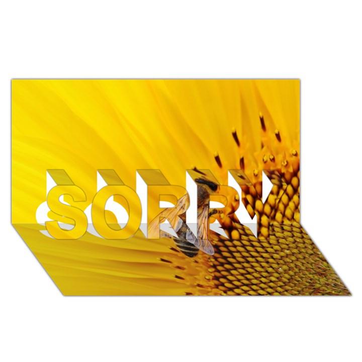 Sun Flower Bees Summer Garden SORRY 3D Greeting Card (8x4)