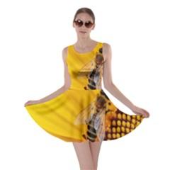 Sun Flower Bees Summer Garden Skater Dress