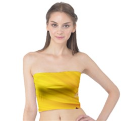 Sun Flower Bees Summer Garden Tube Top