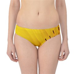 Sun Flower Bees Summer Garden Hipster Bikini Bottoms