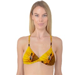 Sun Flower Bees Summer Garden Reversible Tri Bikini Top
