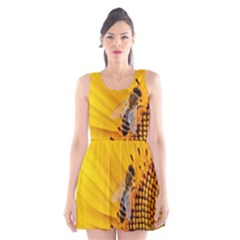 Sun Flower Bees Summer Garden Scoop Neck Skater Dress