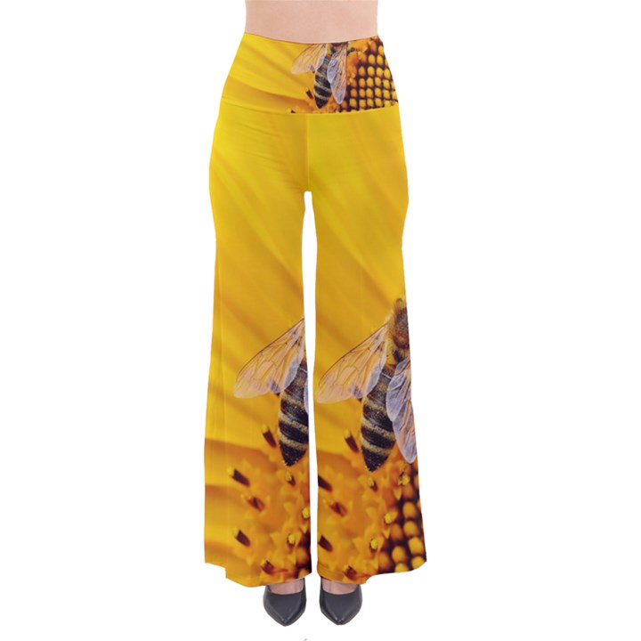 Sun Flower Bees Summer Garden Pants
