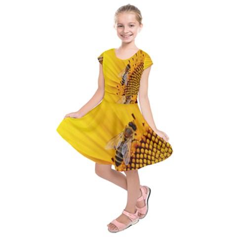 Sun Flower Bees Summer Garden Kids  Short Sleeve Dress