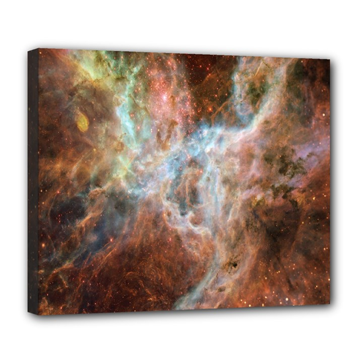 Tarantula Nebula Central Portion Deluxe Canvas 24  x 20