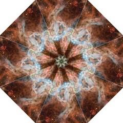 Tarantula Nebula Central Portion Hook Handle Umbrellas (Medium)