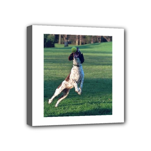 English Springer Catching Ball Mini Canvas 4  x 4