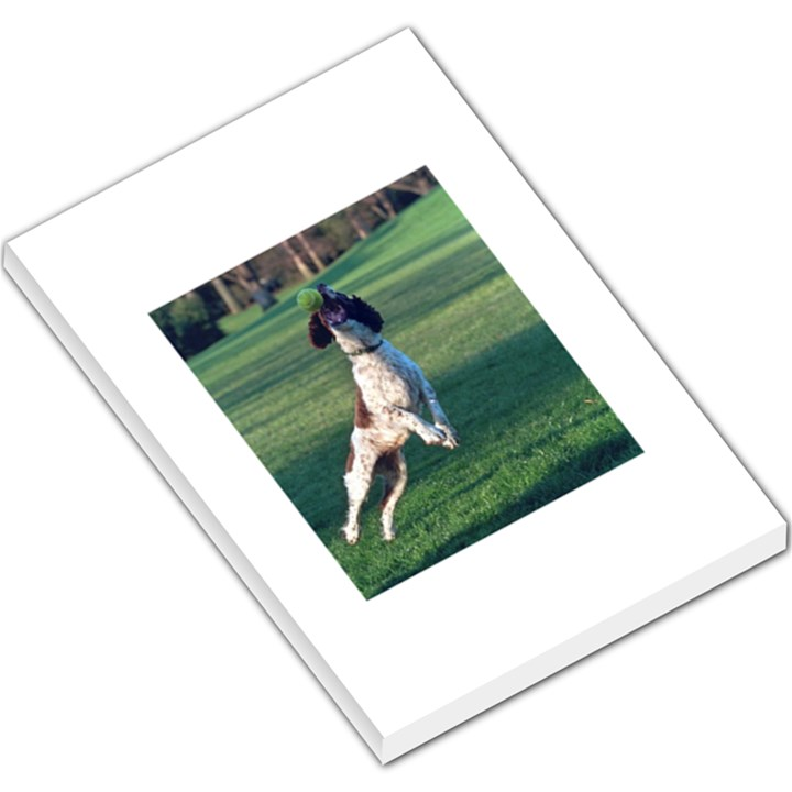 English Springer Catching Ball Large Memo Pads