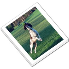 English Springer Catching Ball Small Memo Pads