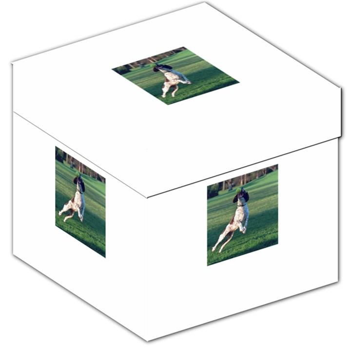 English Springer Catching Ball Storage Stool 12