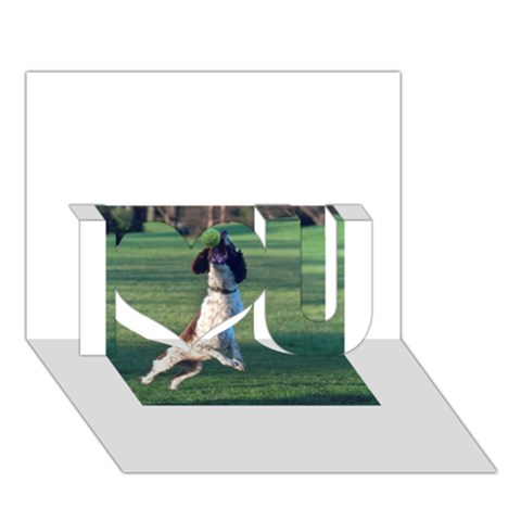 English Springer Catching Ball I Love You 3D Greeting Card (7x5)