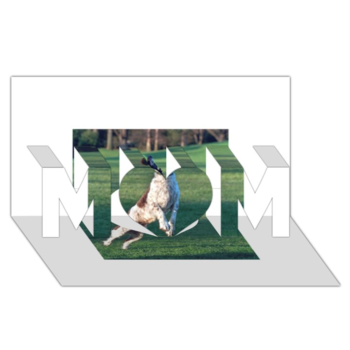 English Springer Catching Ball MOM 3D Greeting Card (8x4)