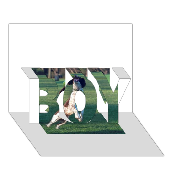 English Springer Catching Ball BOY 3D Greeting Card (7x5)