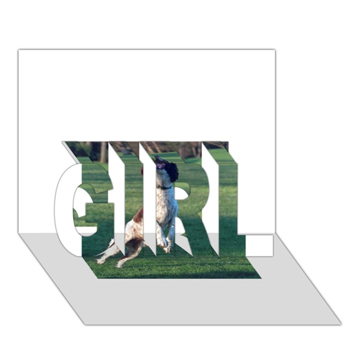 English Springer Catching Ball GIRL 3D Greeting Card (7x5)